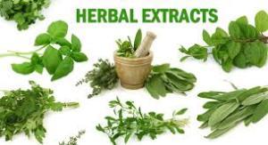 Obat tradisional De nature